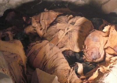 Gallery of Bird Mummies under the tomb -399