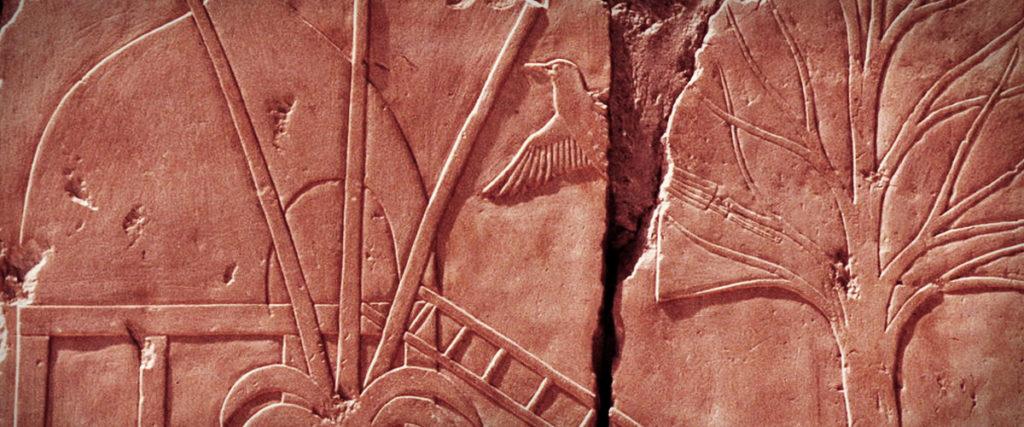 Relieve de un poblado del país de Punt.Templo de Deir el-Bahari