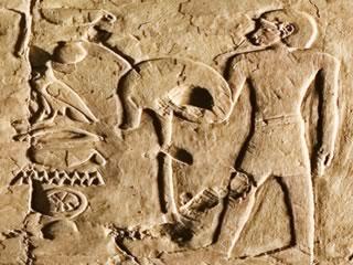 Una escena con el tekenu en la tumba de Djehuty