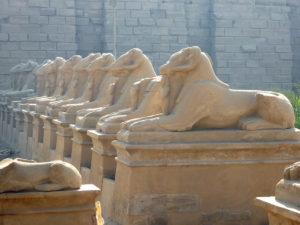 Amón representado como carnero a la entrada al templo de Karnak