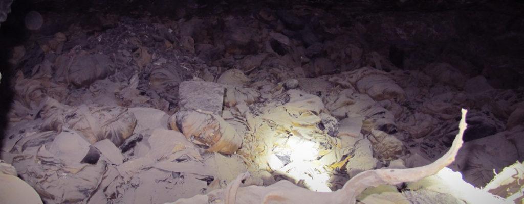 Momias de Ibis