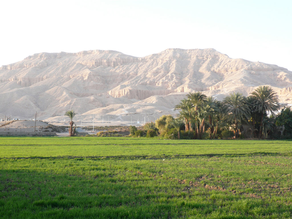 Abd el-Qurna