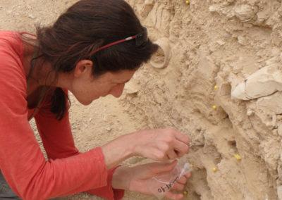 Sole busca en los estratos información sobre las lluvias en la necrópolis entre el 2000 y el año 1500 a. C.