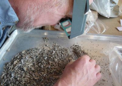 Neal revisa el material que le proporciona Salima procedente de la excavación de la cámara de las momias de animales.