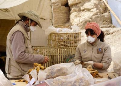 Curro y Marisol revisan material de la excavación.