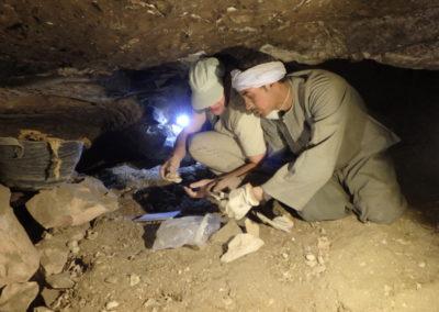 Cisco y Badauy excavan en la tumba paralela a la de Hery.