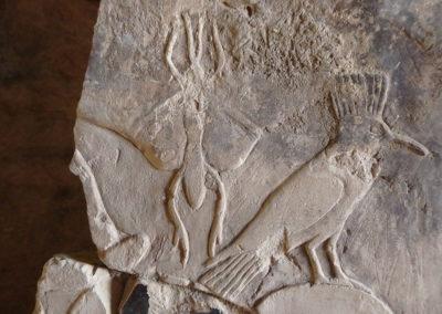 Detalle de una mariposa tallada en la pared derecha de la tumba de Hery.