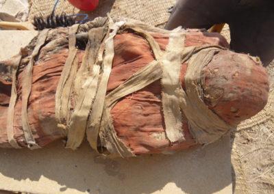 Una de las momias de época greco-romana hallada por Cisco, con el sudario de lino rojo.