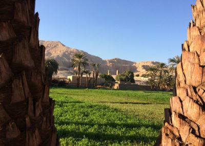 Vista del Marsam y de la montaña tebana desde los campos de cultivo.